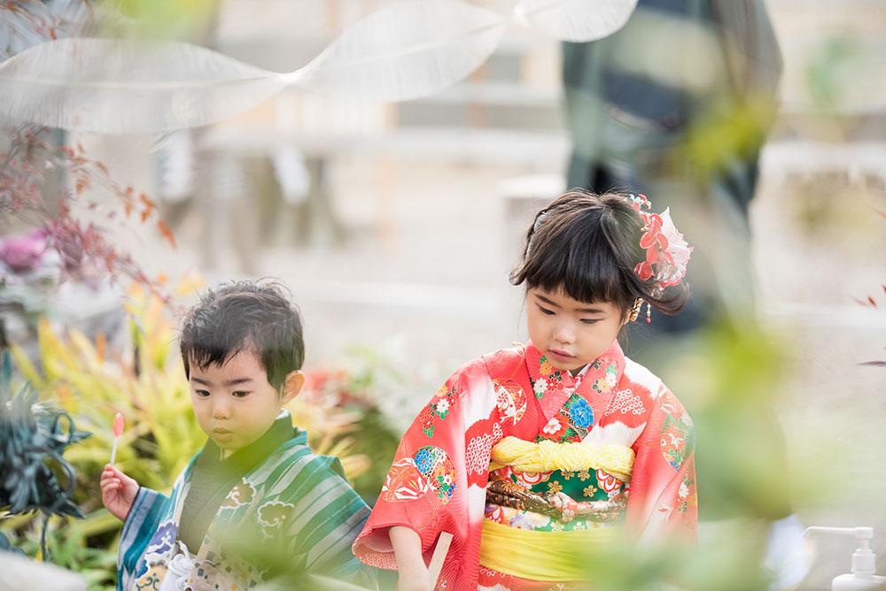神社で着物を着て遊んでいる姉弟の写真